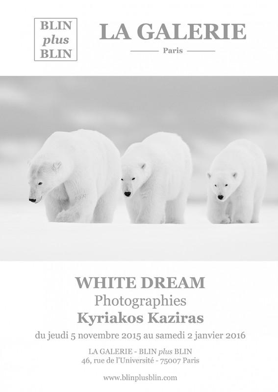Exposition Kyriakos Kaziras à la Galerie Blin plus Blin Paris du 5 novembre 2015 au 2 janvier 2016