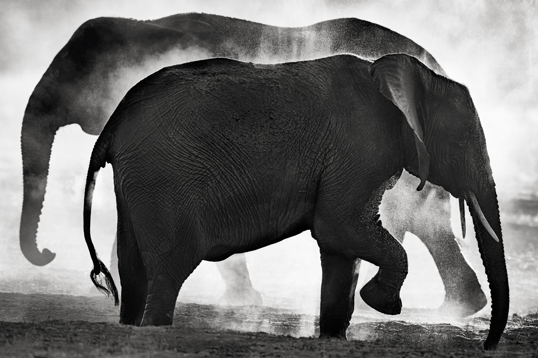 Elephant Dream - Another World - © Kyriakos Kaziras